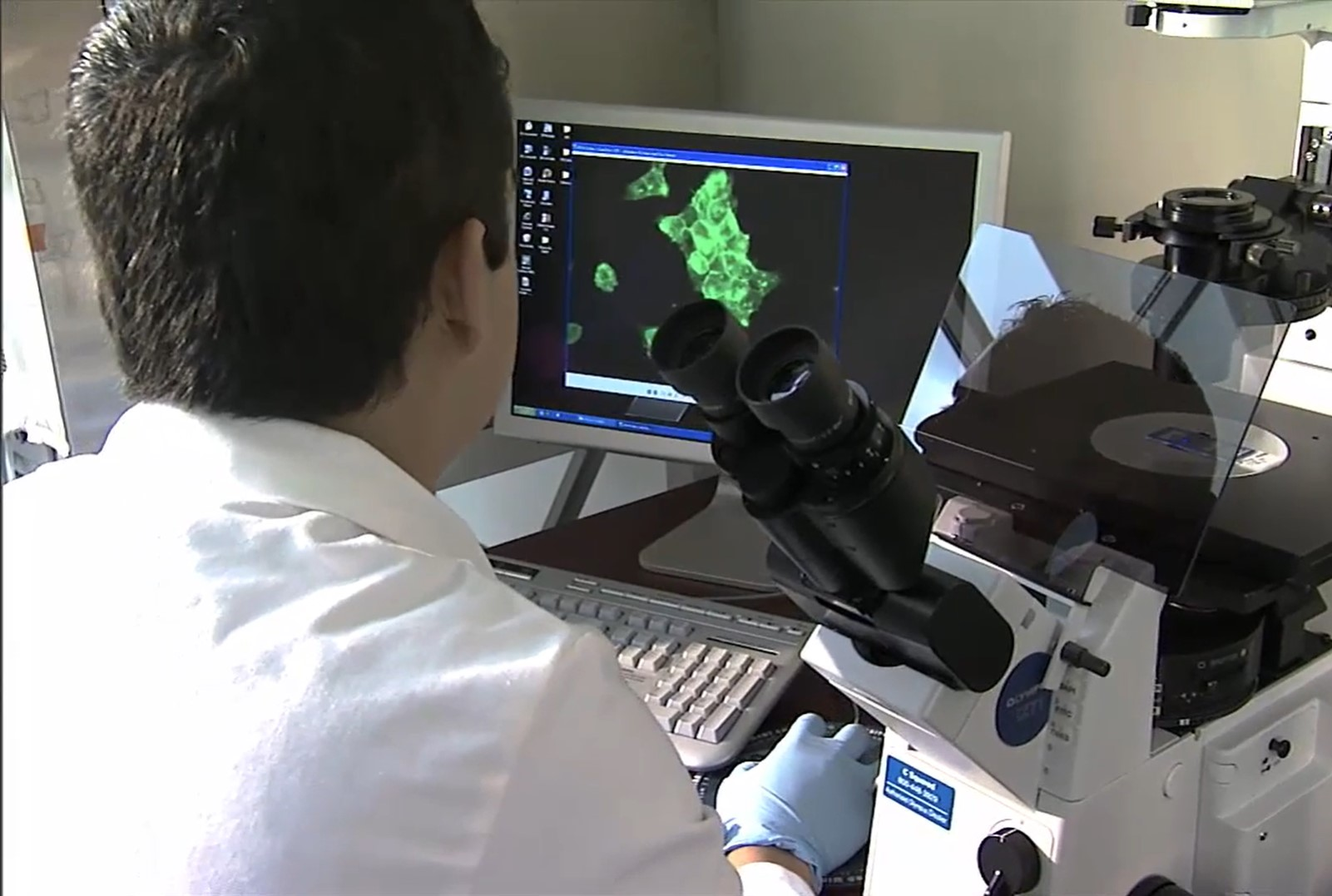 An oral clinical researcher viewing images taken under a microscope