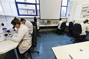 Geography Laboratory Suite 2.42