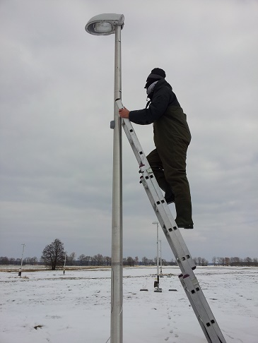 Dr Manfrin during fieldwork, removing the traps in the experimental field in Brandenburg