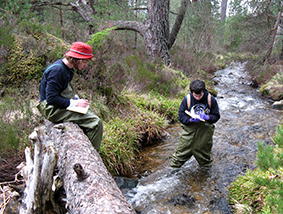 Students visit the Cairngorms in Scotland in the first year of their studies on BSc Geography and BSc Environmental Science.