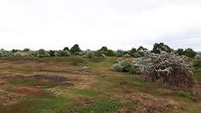 Former gravel pits that exploited Bytham sands and gravels on Maidscross Hill, Lakenheath