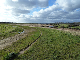 Hadleigh Marsh waste filled flood embankment in Essex, UK