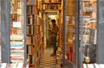 Bookshop - Image credit - Furcifer pardalis