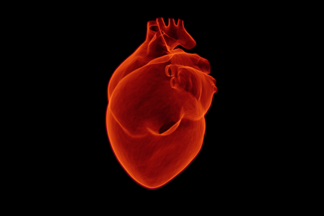 Even low air pollution may alter heart's structure | heart | heart disease