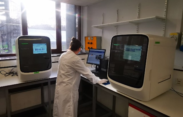 NHS Test and Trace samples being run in a PCR machine at Queen Mary