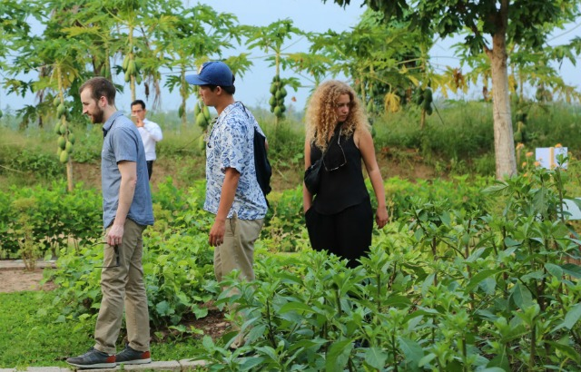 The QMUL team also visited a traditional herbal medicine garden in Ben Tre province.