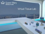 The Virtual Lab allows students to learn lab skills in bioengineering