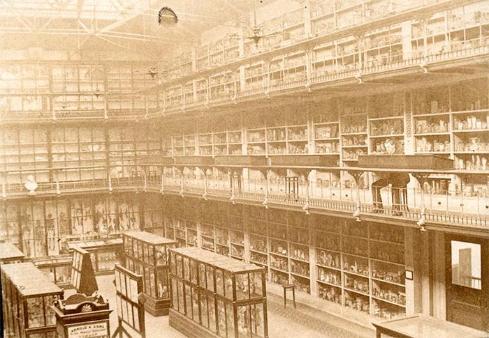 Barts Pathology Museum - photo courtesy of The Royal London Hospital Archives