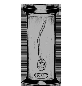 Specimen in a jar